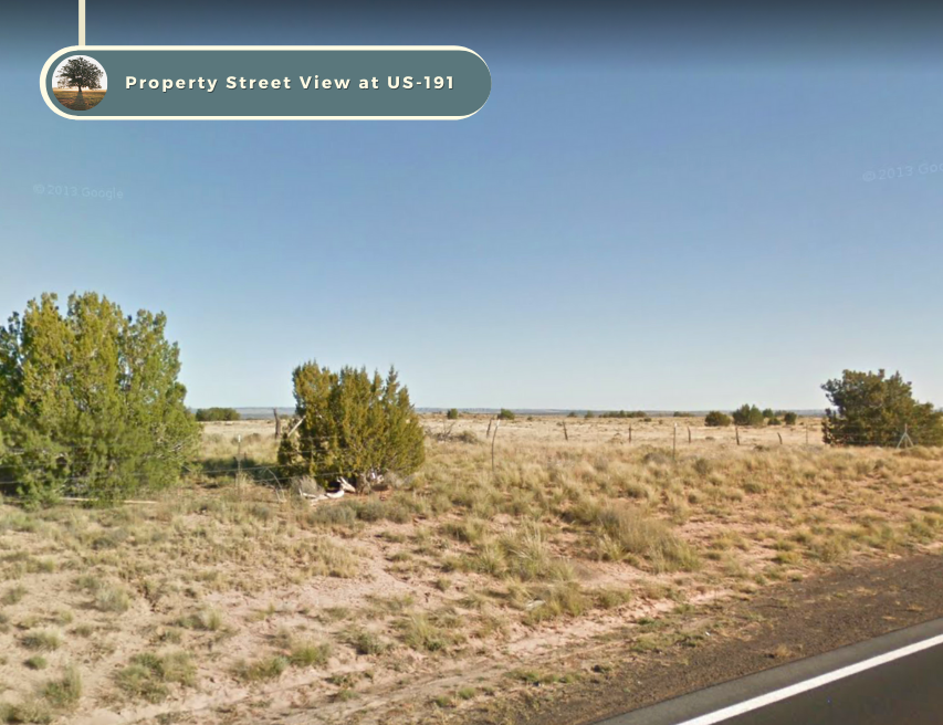 Own 1 Acre In Chambers - Bring Your ATV/Camper-No Restrictions BID ON DOWN PMT  - $69.00