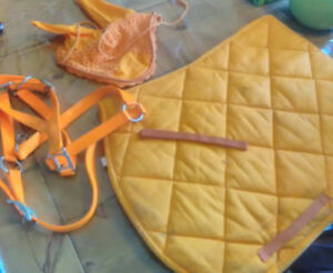 Matching saddle pad, ear bonnet and halter