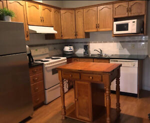 East Village One Bedroom with Fireplace and Washer/Dryer +