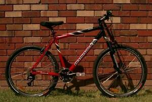 DIAMONDBACK 24Spd, MAXXIS, Large, Alloy Mountain Bike, Bicycle. Windsor Gardens Port Adelaide Area Preview