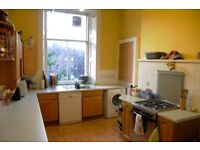 Spacious Double Room in Friendly Flat