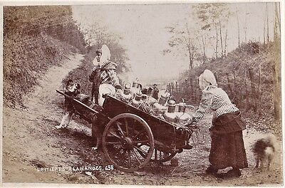 vintage photo dairywomen & mastiff dog pulling milk cart laitiere Belgium c 1890