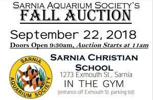 Aquarium auction