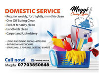 Meggi Cleaning Service