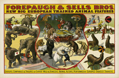 Big European Trained Animal vintage circus poster 16x24