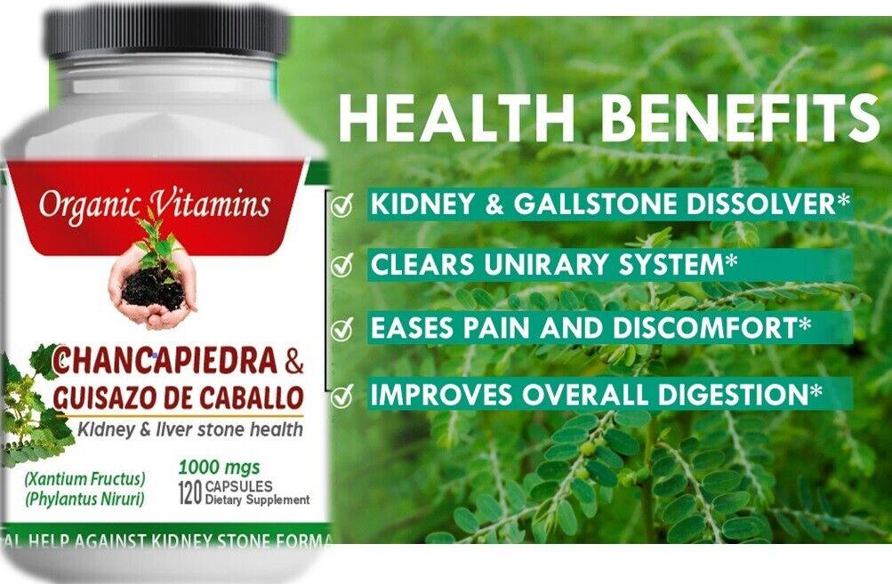 120 CAPS STONE BREAKER CHANCA PIEDRA Herbal Kidney liver Support chancapiedra 1