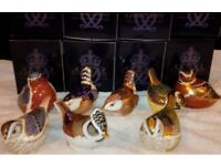 8 x Boxed Royal Crown Derby Bird Paperweights