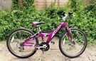 Giant MTX225 Purple Bike
