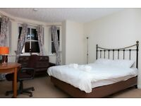 Festival flat apartment in fantastic location beside all the shows