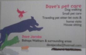 """Dave's pet care"" Dog walking,small pet care.Traveling pet sitter-let outs,feed and house sitting."