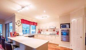 Modern image Kitchen Resurfacing 2 PAC kitchen spray painting Milton Brisbane North West Preview