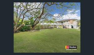 Wanted: House / Large yard: Bald HIlls, Strathpine, Lawnton Morayfield Caboolture Area Preview