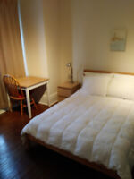Large bright furnished room downtown available Apr 1-female only