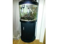 Aquamode 600 Fish Tank / Aquarium including Accessories