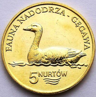 POLAND - KOŁBASKOWO 5 NURTÓW 2009 BIRD GREYLAG GOOSE RARE COIN