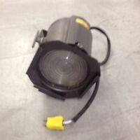 Stage Light-$25