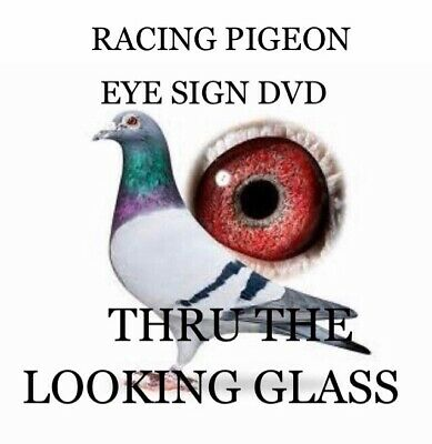 Racing Pigeon Dvd Eye Sign Thru The Looking Glass Dvd