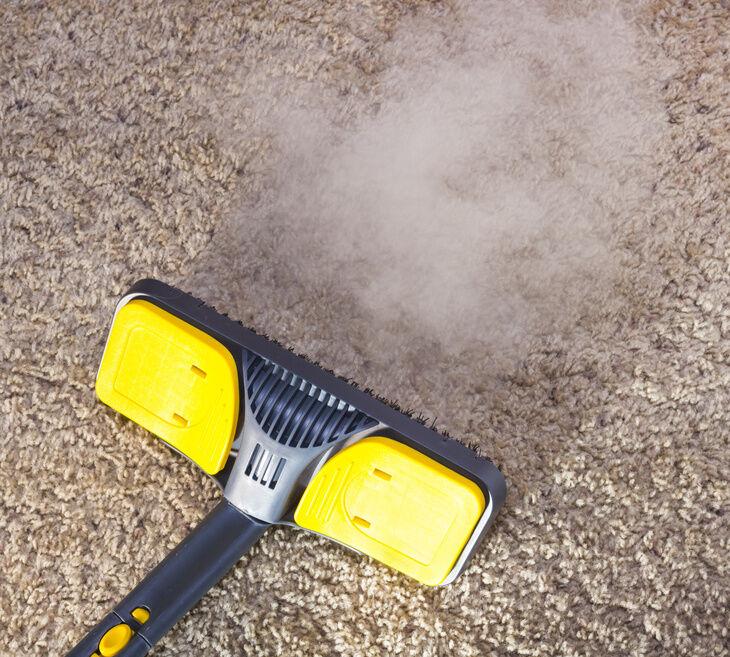 Nass-Trockensauger: saugt drinnen und draußen alles weg