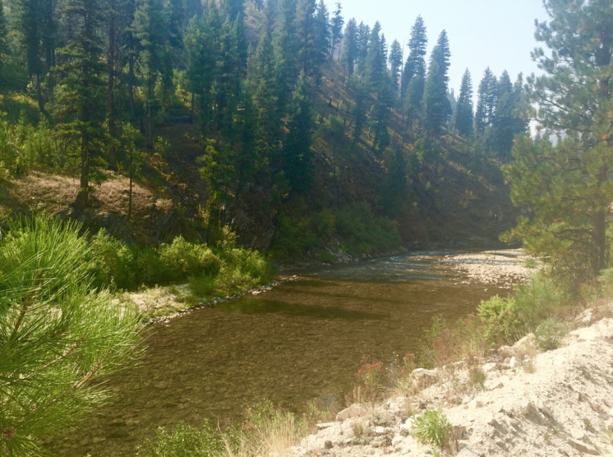 20 Acre Gold Mining Claim 🏴☠️Placer🏴☠️