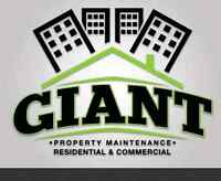 RESIDENTIAL / COMMERCIAL SNOW REMOVAL