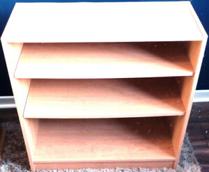 JUST REDUCED Bookshelf with totally adjustable Shelves