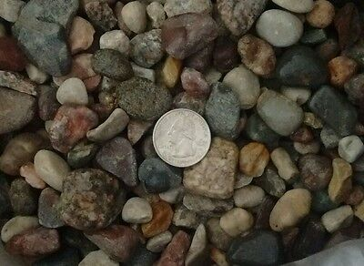 25 lbs Natural  Aquarium Fish Tank  Substrate Pebbles gravel and color stones. M