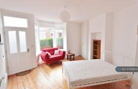Studio flat in Pinner Road, Sheffield, S11 (#1168674)