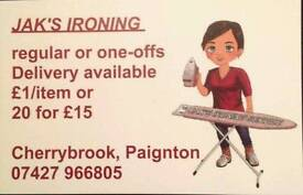 Ironing service Paignton Iron clothes laundry help press washing