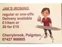Ironing service Paignton Iron clothes