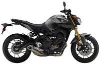 2015 Yamaha FZ-09 -