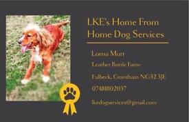 Dog boarding & walking Services