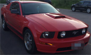 Ford, Mustang GT, 5.0 L 8 Cyl Coupe