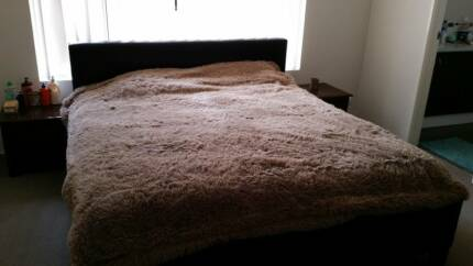 En Suit Master Bedroom for Rent
