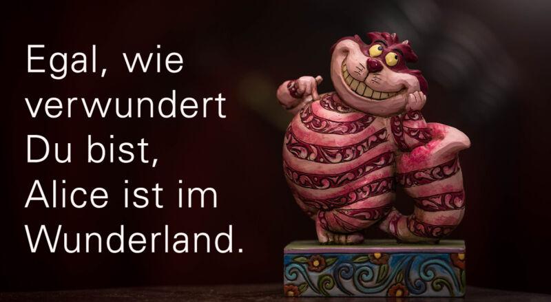 9.Egal, wie verwundert Du bist, Alice ist im Wunderland.