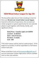 Adult Mixed Indoor League 30+