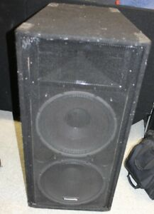 Two High Performance Speaker in Community Speaker Cab with Horn