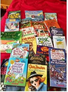22 Scholastic chapter books..
