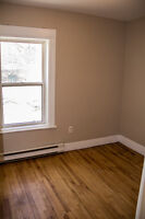 2 bedroom unit downtown centrally located available Feb 1st