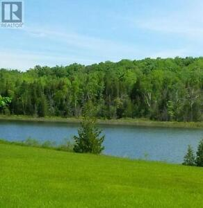 A Tranquil Oasis minutes from Lucknow Kitchener / Waterloo Kitchener Area image 8