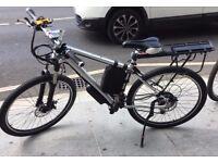 Electric Bike Go Go Mountain New