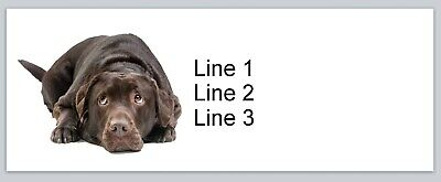 Personalized Address Labels Black Labrador Dog Buy 3 Get 1 Free P 688