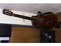 accoustic/electric guitar with amp and echo