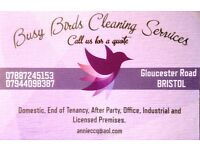 Professional Cleaners. Houses, Offices, Pubs, End of Build, End of Tenancy, After Party.