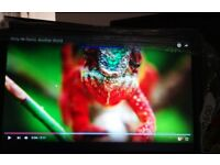 VISTA VFS-221W/HI-Lite 21.5 INCH HDMI Monitor.SEE PIX good display