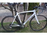 Ribble Sportive Bianco Carbon Road Bike Ultegra 55cm