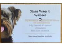 Stans Wags & Walkies offer home boarding & daycare for all small breed dogs. Licenced & Insured