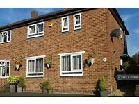3 bedroom house in Chestnut Avenue, Tamworth, B79 (3 bed)