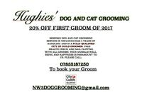 Hughies' NW3 Dog and Cat grooming. 20% OFF FIRST GROOM of 2017