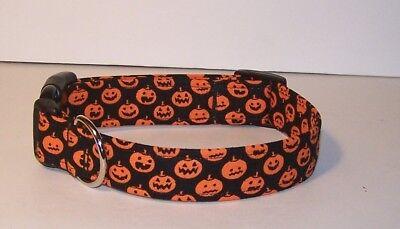 Wet Nose Designs Mini Jack o Lanterns Dog Collar on Black Halloween Pumpkins