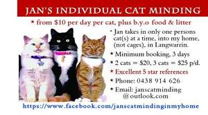 JAN'S INDIVIDUAL CAT MINDING, in my home (not cages) from $10 p.d Langwarrin South Frankston Area Preview